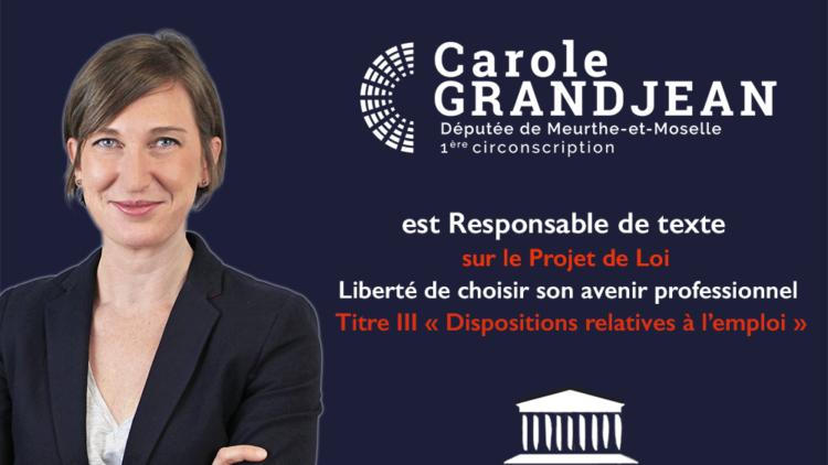 Commission des Affaires Sociales – Projet de loi pour la Liberté de Choisir son Avenir Professionnel
