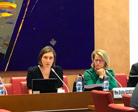 Commission des Affaires Sociales – Présentation du rapport sur le Socle Européen des Droits Sociaux – 10 avril 2019