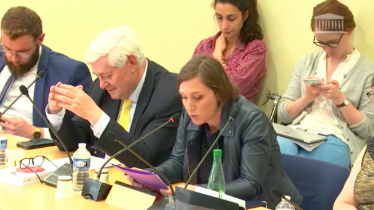 Commission des Affaires Européennes – Table ronde Europe – 28 mai 2019