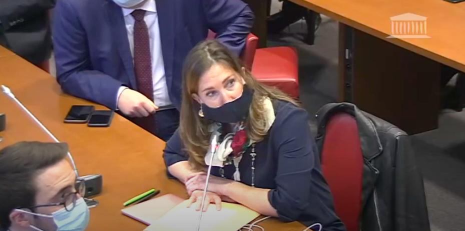 Audition du Ministre de la santé sur la vaccination – 12 janvier 2021