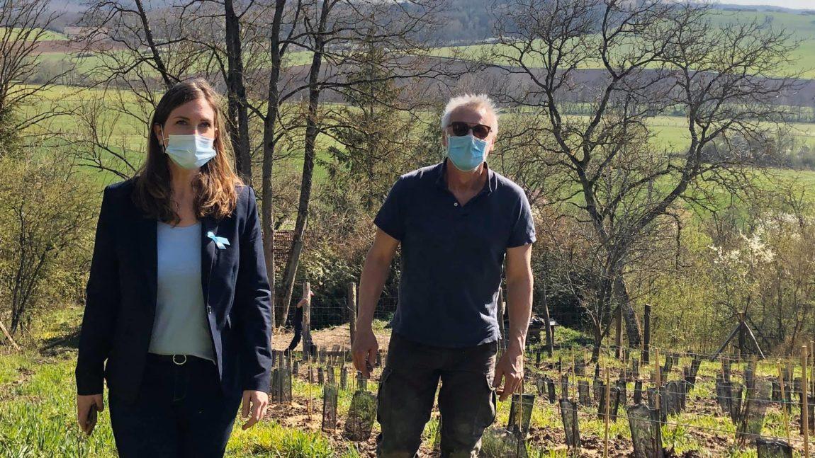 Réhabilitation des vignes de Moncel-sur-Seille – 2 avril 2021