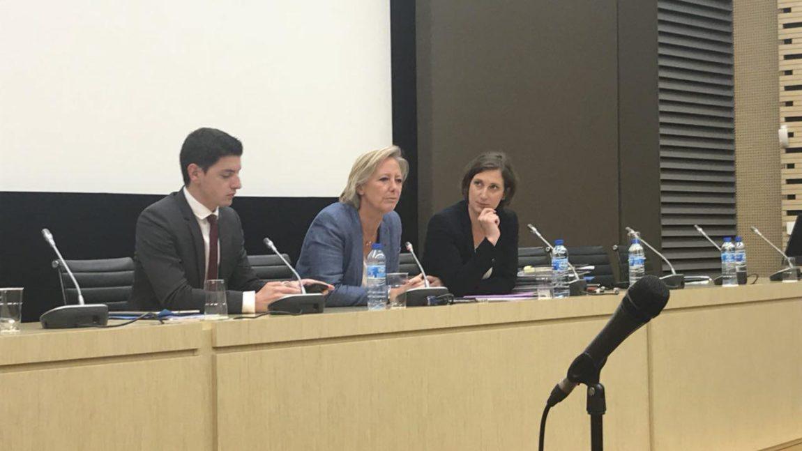 Réunion d'informations aux députés – Sophie Cluzel, Secrétaire d'Etat en chargée des personnes handicapées