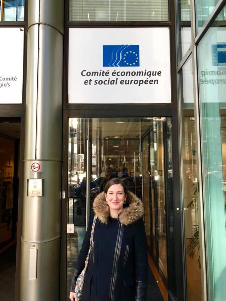 Comité économique et social européen à Bruxelles-7 mars 2019