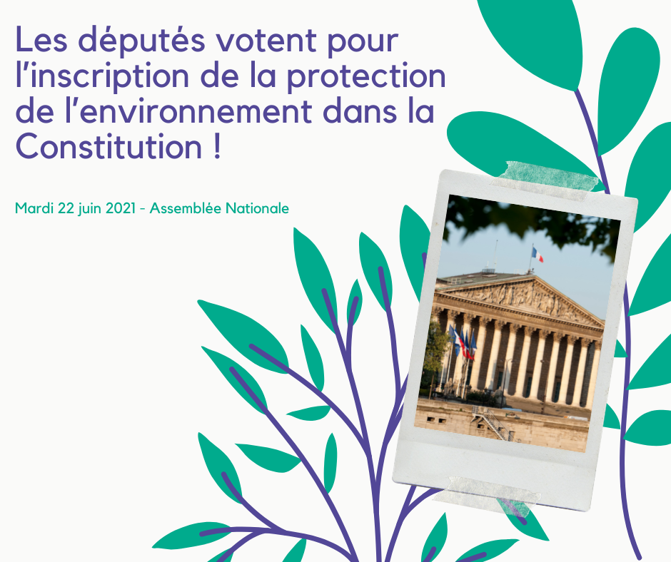 Vote-environnement.png